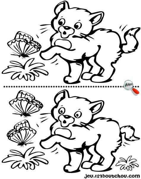 7 différences enfant fiche 7 différences animaux / chat