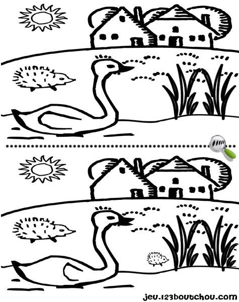 7 différences enfant fiche 7 différences animaux / cygne