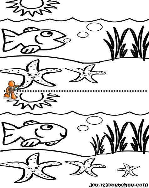 7 différences enfant fiche 7 différences animaux / etoile mer
