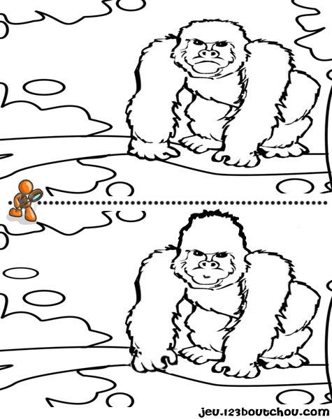 7 différences enfant fiche 7 différences animaux / gorille