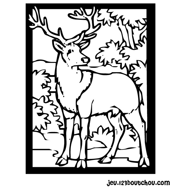 Pin coloriage de pelleteuse on pinterest - Coloriage cerf ...