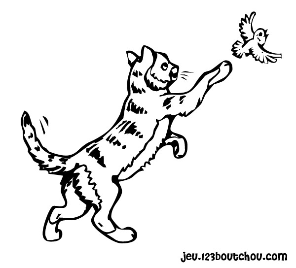 Chat et chien - Un dessin de chat ...
