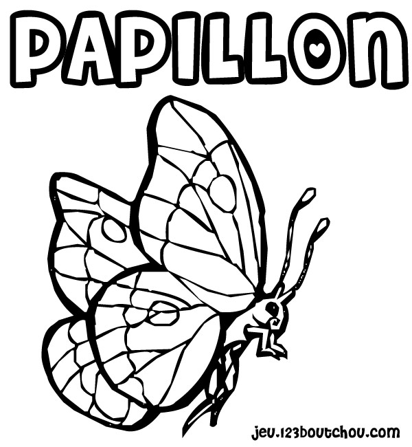 Papillon window color les passions de laure - Papillon imprimer ...