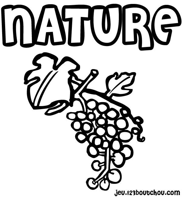 Coloriage Printemps Gratuit.Dessin Marguerite Fleur Et Printemps Pour Enfants A Imprimer