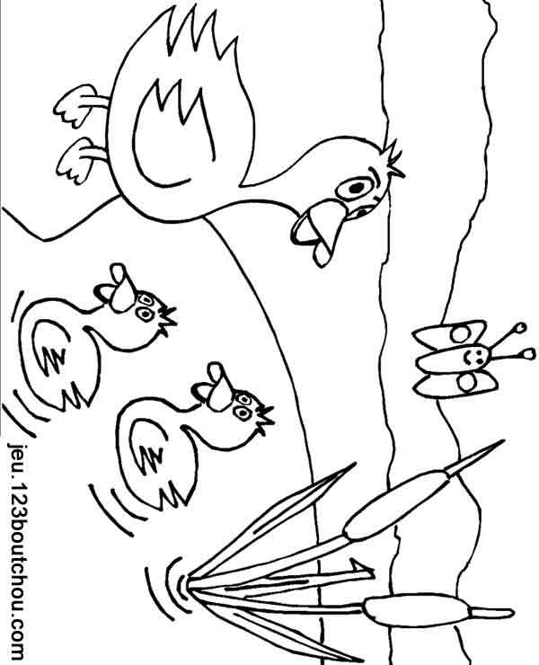 Coloriage Ferme Maman Canard Et Ses Canetons Pour Enfants à