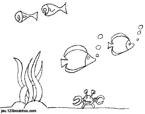 Coloriage Crabe Dauphin.Coloriage De La Mer Pour Enfants A Imprimer Gratuitement
